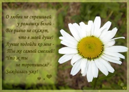 день любви открытки: