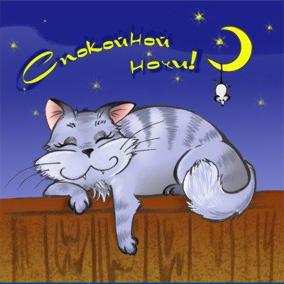 Спокойной ночи мой котенок