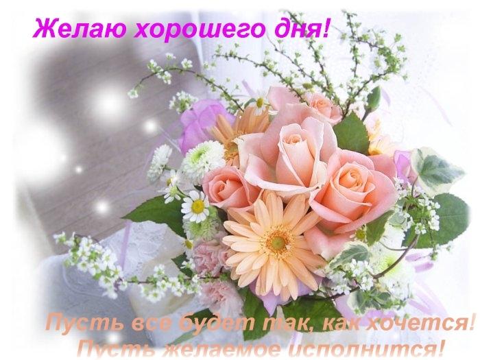 открытки с пожеланиями дня и здоровья