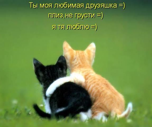 Открытка «Не грусти пожалуйста!»: www.vampodarok.com/wish/schastiya/ne-grusti/cont746.html