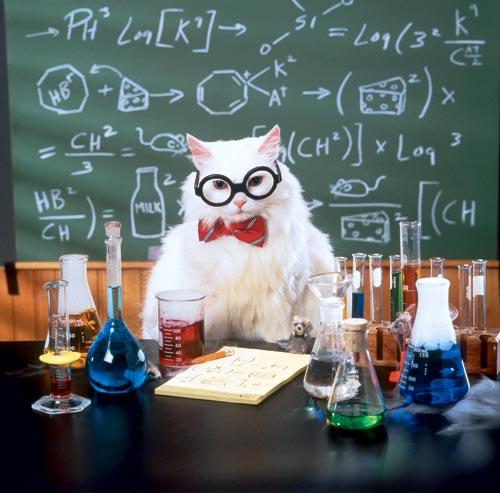 С днем учителя учитель химии
