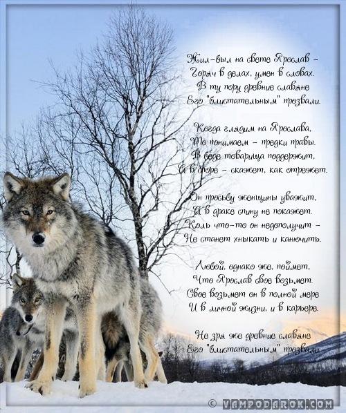 стихотворение с именем Ярослав…