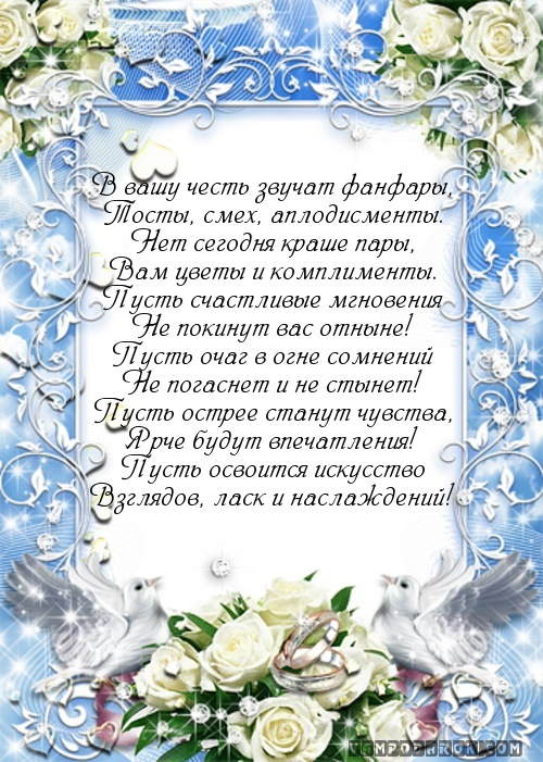 поздравление на свадьбу в стихах прикольные