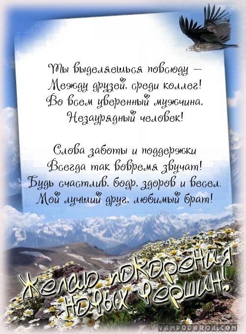 стихи с поздравлениями брату…