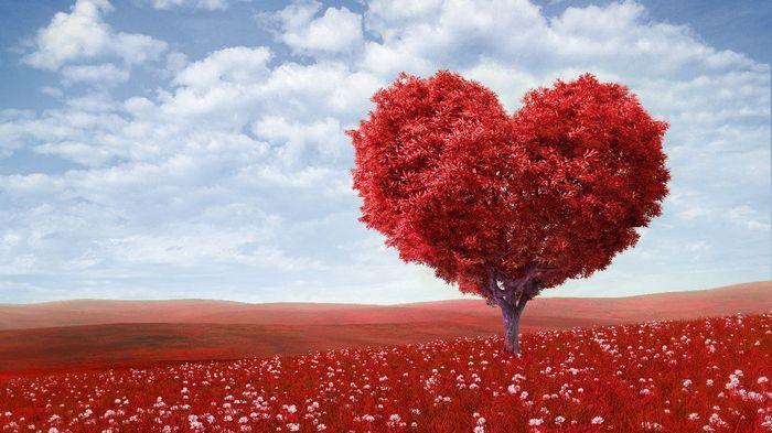 Любить и быть любимой, верить и ждать новой встречи, вспоминать прекрасные дни, проведенные вместе, когда время для нас прекращало существовать. Я готова жить так каждый день, лишь зная, что ты всегда будешь со мной рядом. Весь мир открыт для нас с тобой. И в этом мире мы сможем найти или построить свое собственное счастье, основанное на нашей любви! С днем рождения, любимый мой!