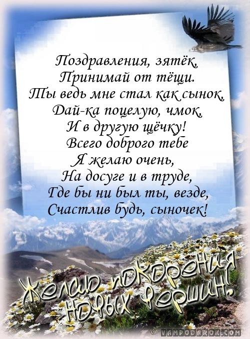 Поздравление в стихах любимого зятя 494