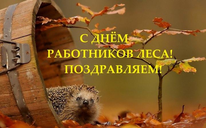 Изображение - Поздравление работников леса в стихах den-lesnika-06