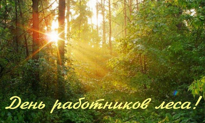 Изображение - Поздравление работников леса в стихах den-lesnika-07